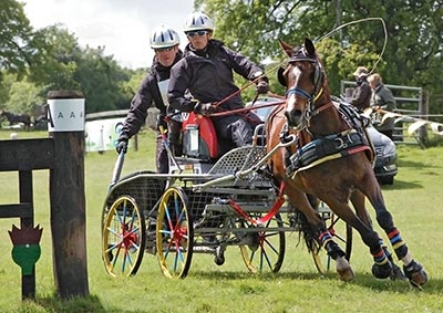 Introduction to British Carriage Driving